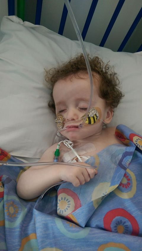 Jax asleep with oxygen tube image